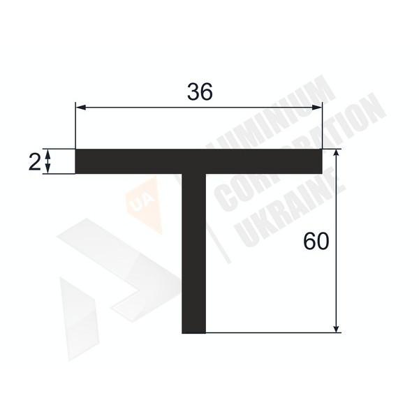 Т-образный профиль (Тавр алюминиевый) | 36х60х2 - АН 38-0050