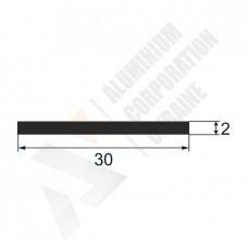 Алюминиевая полоса <br> 30х2 - БП 00219 1