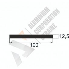 Аюминиевая полоса <br> 100х12,5 - АН БПО-1576-683 1
